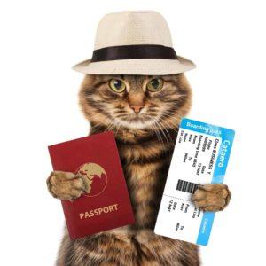 Le passeport européen pour animaux