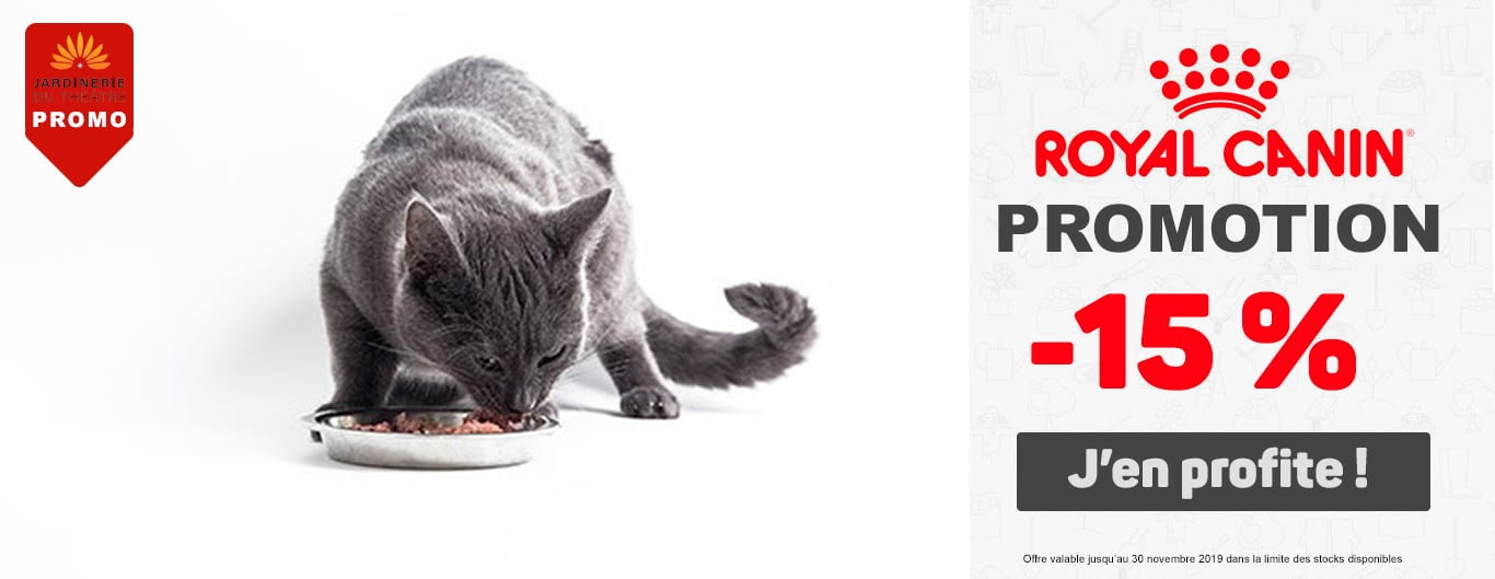Promotion Royal Canin Chat