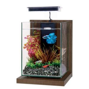 Aquarium Wiha
