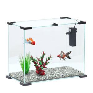 Aquarium Aqua NanoLife First 24