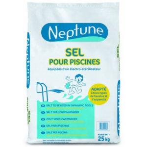 Sel de piscine Neptune