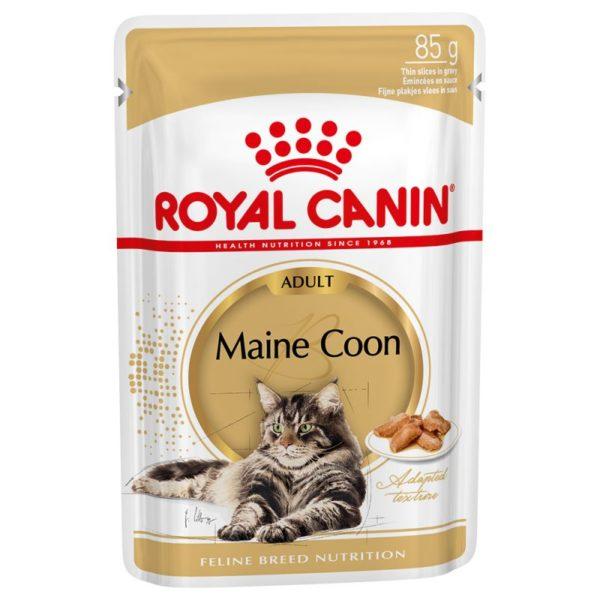 Royal Canin Maine Coon Adult en sauce