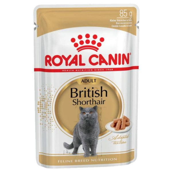 Royal Canin British Shorthair Adult en sauce