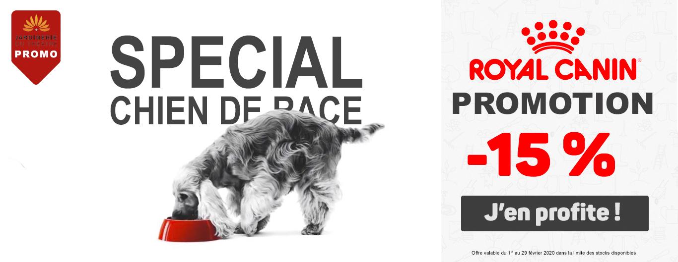 Promo Royal Canin spécial chien de race