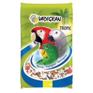 Graines perroquet tropical