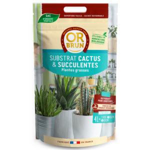 Substrat cactus et plantes succulentes Or Brun