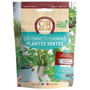 Bâtonnets engrais plantes vertes Or Brun